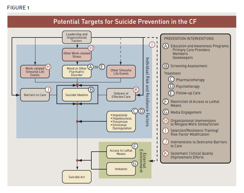 Potential Targets for Suicide Prevention in the CF (Description follows)