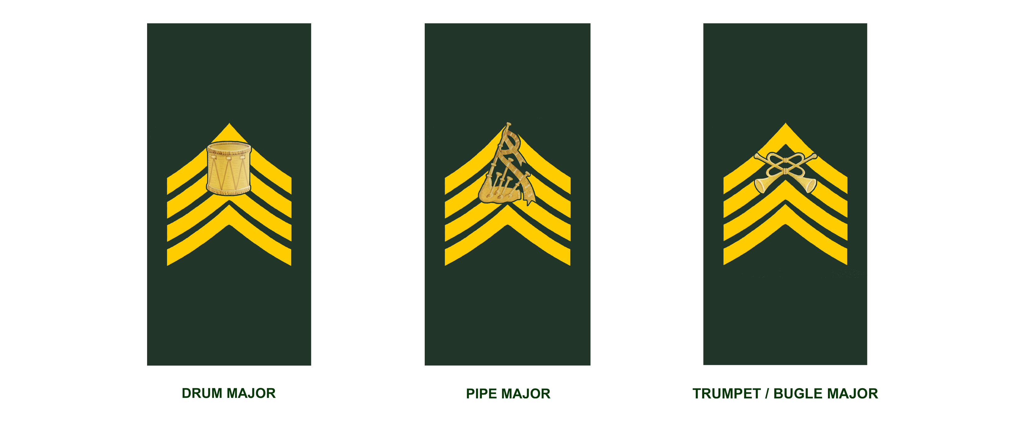 Appointments (in descending order): Drum Major, Pipe Major, Trumpet/Bugle Major