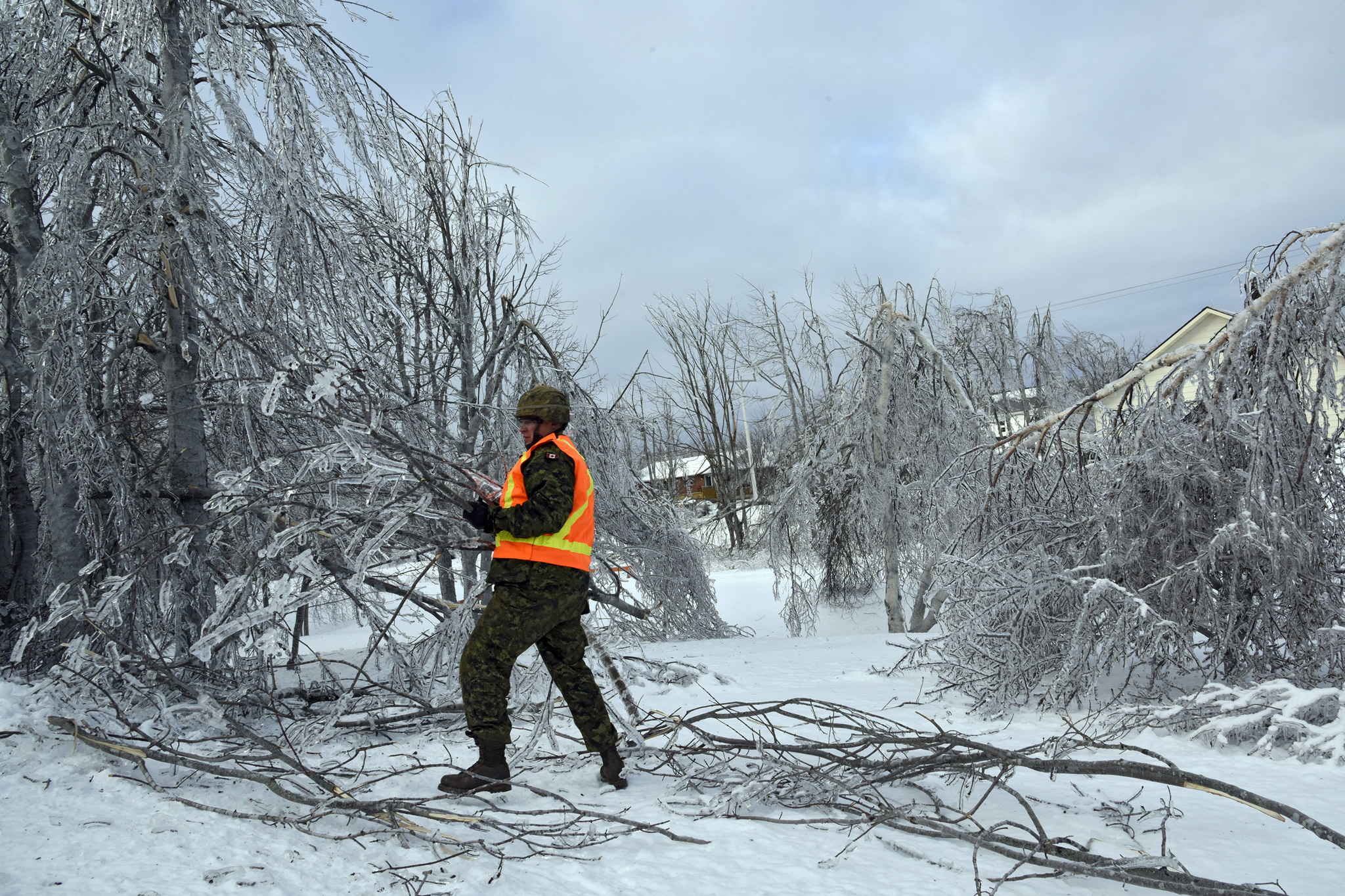 Man surrounded by icy trees lifts broken branches.
