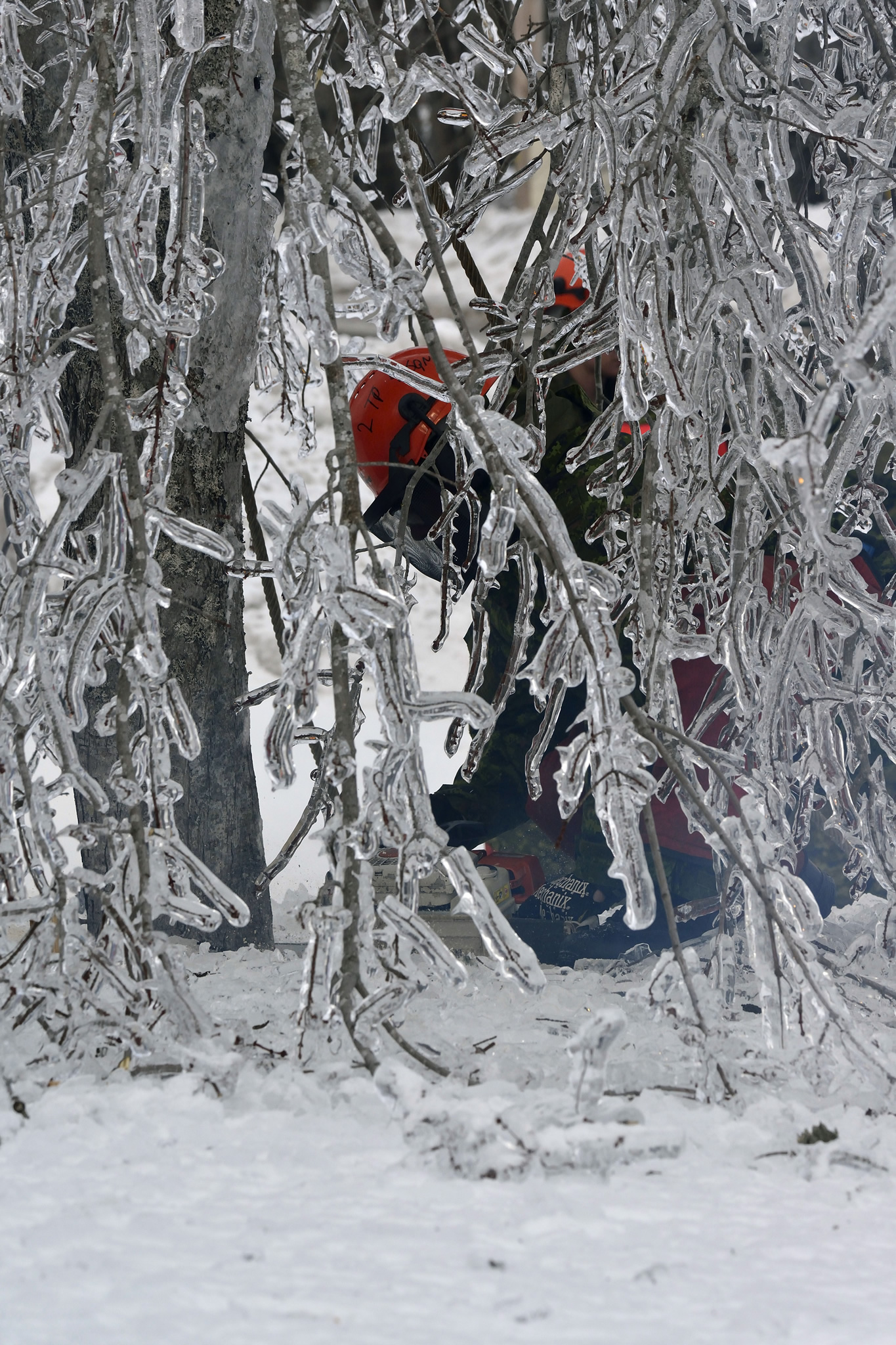 Members of 4th Artillery Regiment (General Support) remove fallen tree branches and damaged trees during Operation LENTUS in the Acadian Peninsula of New Brunswick on January 31, 2017. (Photo: WO Jerry Kean, 5 Canadian Division Public Affairs)