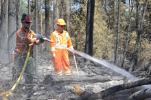 Montreal Lake, Saskatchewan . 8 July 2015 – A Fire Ranger and a member of A Company, Immediate Response Unit (West) extinguish a hot spot near Montreal Lake, Saskatchewan during Operation LENTUS 15-02. (Photo: MCpl Mélanie Ferguson, Canadian Army Public Affairs)