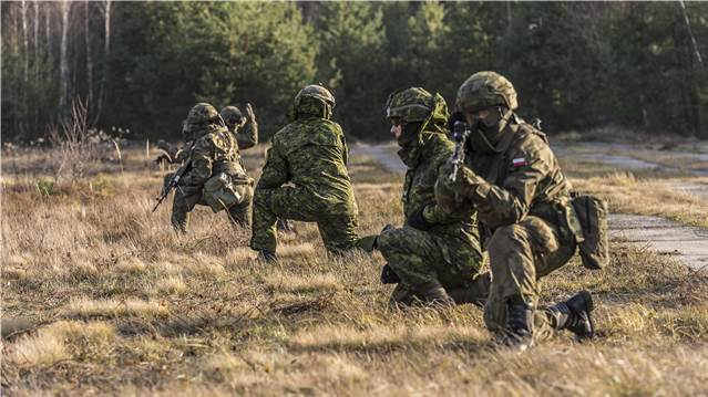 Canadian and Polish Armed Forces members take a knee.
