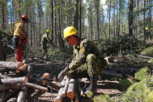 "Whitehorse, Yukon. 6 August 2013 – Master Corporal Francis Archambault (centre) and other members of the Immediate Reaction Unit from Royal 22e Régiment, Valcartier, Québec, assist the Yukon Wildland Fire Management Department to clear brush that may become fuel for forest fires, in a procedure known as ""shrubbing"", during Operation NANOOK 2013. (photo by SLt Eliane Trahan, Canadian Forces Combat Camera Public Affairs Officer)"