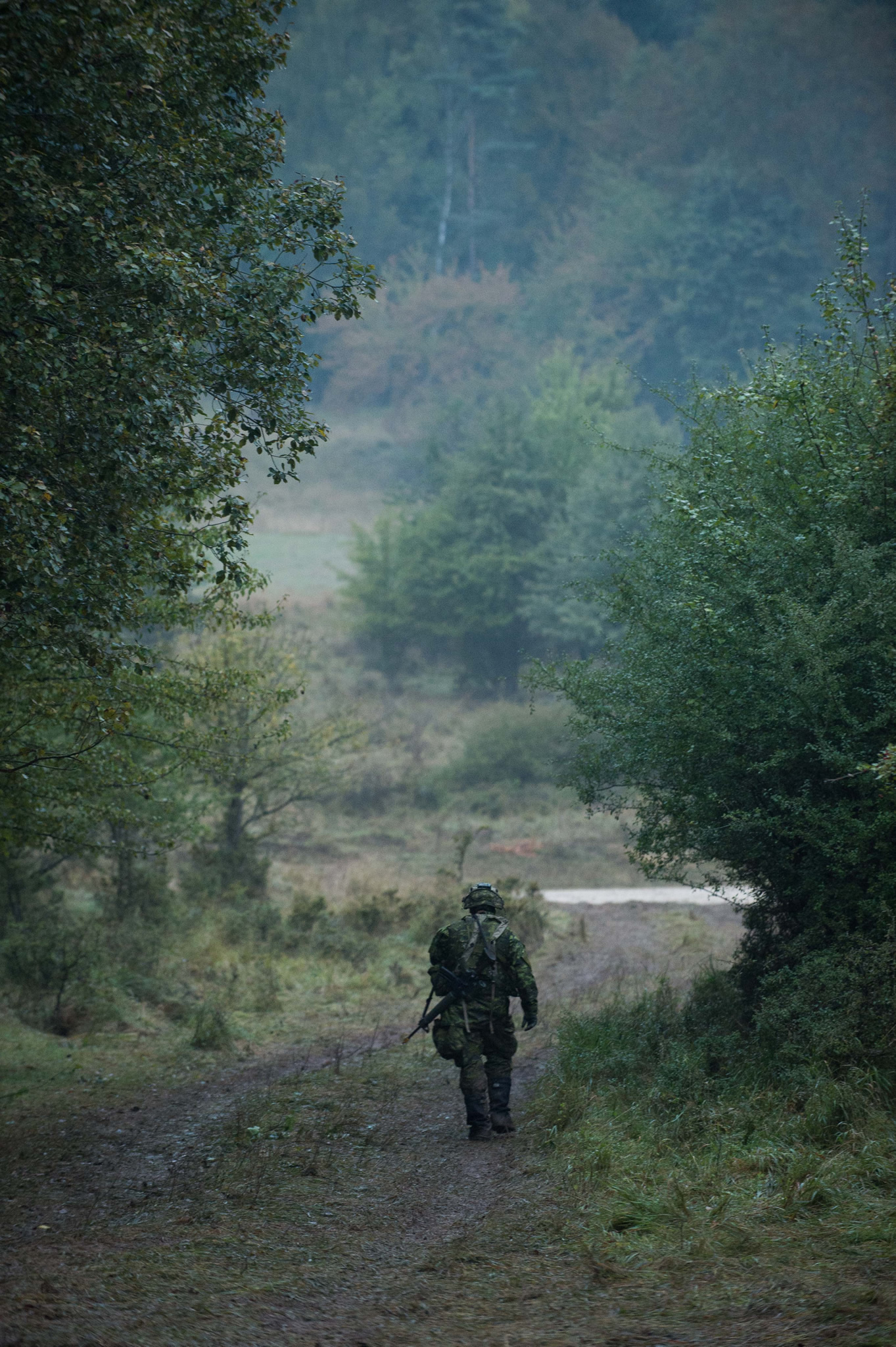 A soldier on a path surrounded by forest.