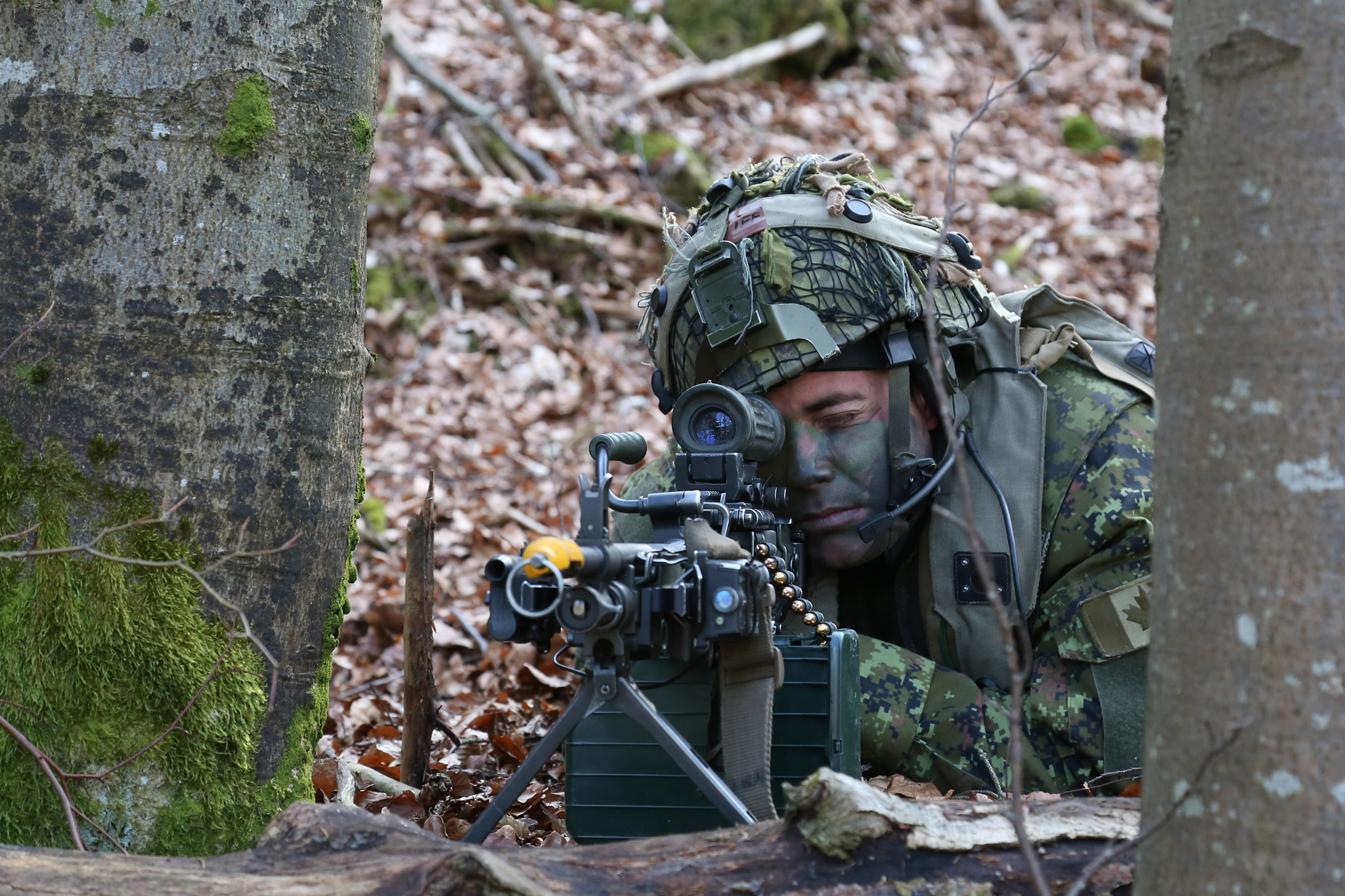 A Canadian soldier of Charlie Company, 3rd Princess Patricia Canadian Light Infantry provides security while conducting a react to contact scenario during Exercise Allied Spirit VI at 7th Army Training Command's Hohenfels Training Area, Germany, March 16, 2017.